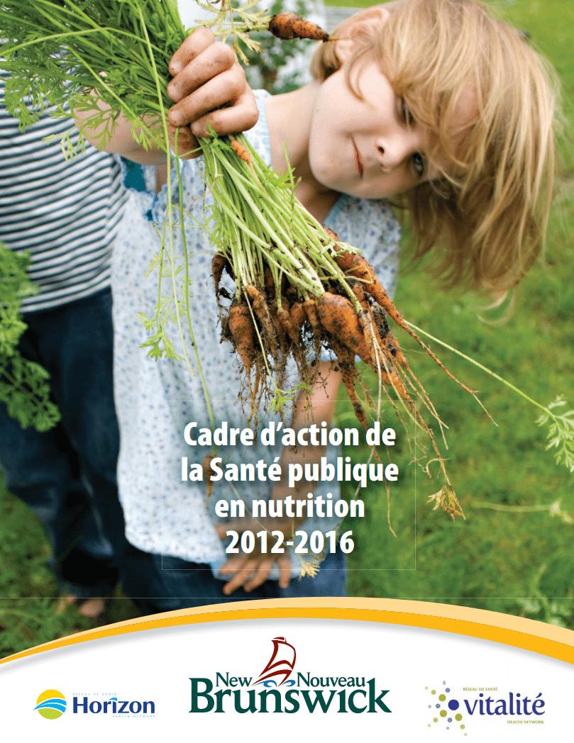 cadre d de la sant 233 publique en nutrition 2012 2016 the wellness movement le